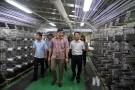 Lâm Thao: Tăng cường thu hút đầu tư phát triển kinh tế - xã hội