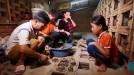 Tứ Xã: Nghề chăn nuối rắn tiếp tục đem lại hiệu quả kinh tế cao