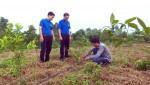 Thanh niên Lâm Thao với phong trào khởi nghiệp, lập nghiệp